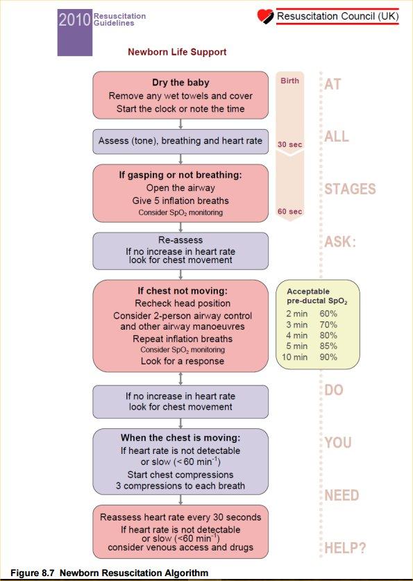 Apls Resuscitation In The Newborn